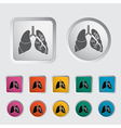 lungs vector image