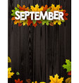 september background with colorful leaves vector image vector image