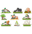sticker set with different wild animals and vector image vector image