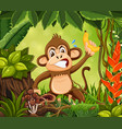 angry monkey in jungle background vector image