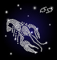 brilliant sign of the zodiac cancer is the starry vector image vector image