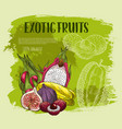 exotic tropical fruit sketch grunge poster design vector image vector image