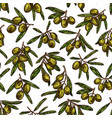 olives sketch pattern background vector image vector image
