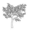 tree silhouette isolated symbol icon design vector image