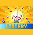 bingo or lottery card with balls and lotto machine vector image