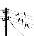 Birds migration white black vector image vector image