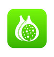fig fruit icon digital green vector image vector image