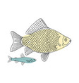 fish sketch for your design vector image vector image