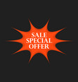 sale special offer sticker vector image vector image