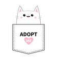 adopt me kitten sitting in pocket pink heart vector image vector image