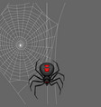 background with black widow spider vector image