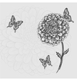 black-and-white flower with butterflies Hand-drawn vector image vector image