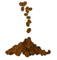 Coffee beans vector image vector image