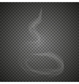 Delicate white cigarette smoke waves vector image