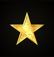 gold star icon single design decorative element vector image vector image