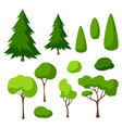 set trees spruces and bushes summer or spring vector image