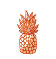 silhouette delicious pineapple tropic fruits vector image vector image
