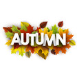 autumn banner with colorful leaves vector image vector image