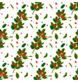 Christmas decorative leaves holly and branches
