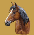 colorful hand drawing horse portrait-10 vector image