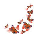 frame corner made peacock butterflies in vector image