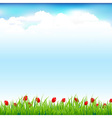 Green Landscape With Grass And Red Tulip vector image