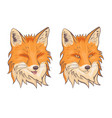 head fox isolate on a white background vector image vector image