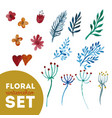 set floral watercolor vector image vector image