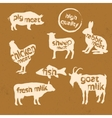 Set of animals silhouette and text inside them vector image vector image