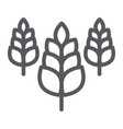 spikelet line icon farm and agriculture wheat vector image