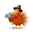 Thanksgiving day funny cartoon character turkey