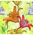 abstract floral blooming lilies background vector image vector image