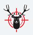 deer head on red target vector image