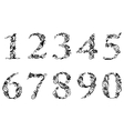 Digits and numbers set with floral details vector image vector image