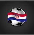 football flag design vector image vector image