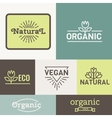 Fresh And Natural Food vector image vector image