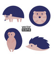 icons hedgehogs on white background