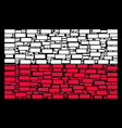 poland flag pattern of building brick icons vector image