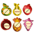 set - fruit labels on white background vector image