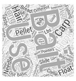 SF Carp fishing tips Word Cloud Concept vector image vector image