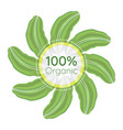 100 percent organic logo vector image