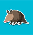 armadillo character sticker template vector image vector image