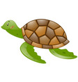 cute turtle with brown shell vector image vector image