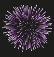 fireworks lilac on a black background vector image