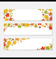 horizontal banner set with autumn falling leaf on vector image vector image