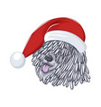 hungarian sheepdog wears christmas hat vector image vector image