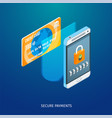 secure payments concept vector image vector image