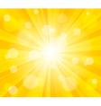 Bright sun effect background vector image vector image