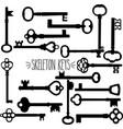 skeleton keys silhouette vector image vector image