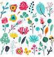 summer flat flowers floral garden flowering vector image